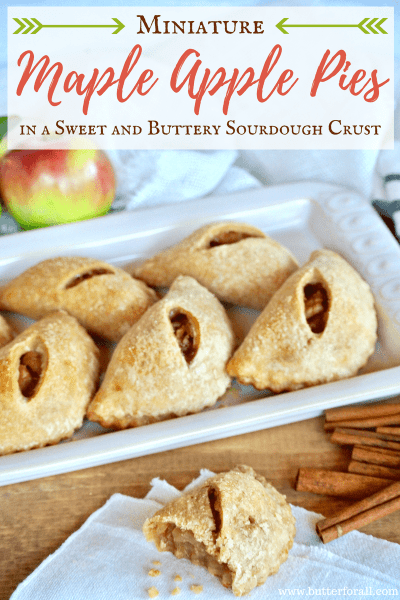Perfect little handheld apple pies in a flaky sourdough pastry crust.