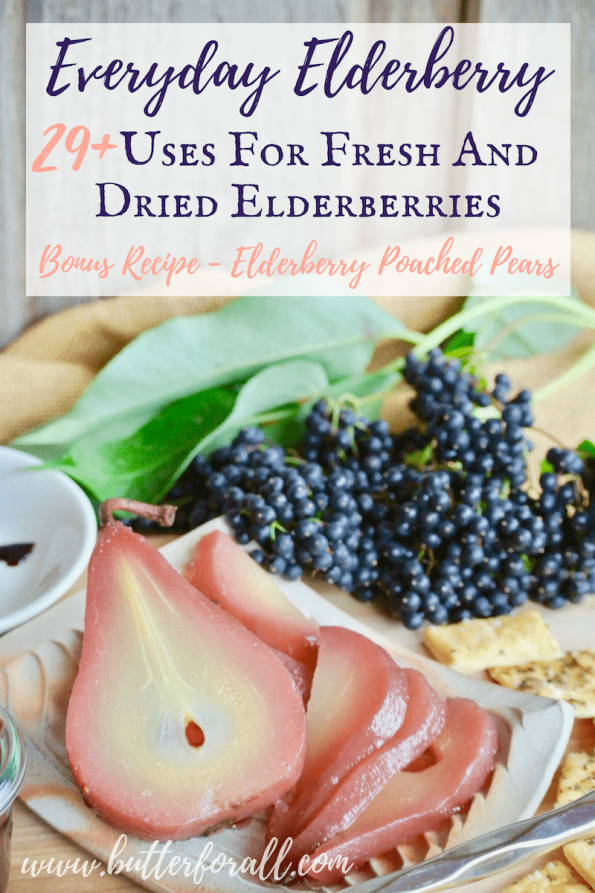 Elderberries can be used for more than medicine! Get 29+ recipes for using elderberries from drinks to desserts!