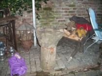 barbecue 2008 118