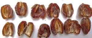 Medjool (Medjoul) Datteln: Qualität