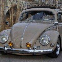 1957 Bug Oval Ragtop
