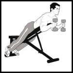 Weight Training for Beginners PLR
