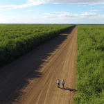 Purchase – Rural Funds Group [ASX:RFF]