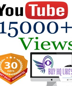 Buy 15000 YouTube Views