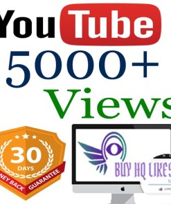 Buy 5000 YouTube Views