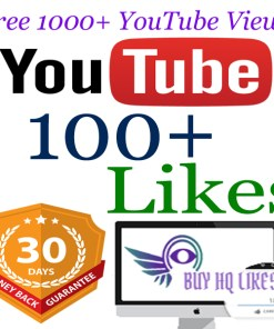 Buy 100 YouTube Views