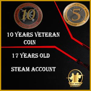 Exclusive 10 Years Veteran Coin