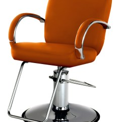 Belmont Salon Chair Polyester Covers For Sale Takara St E10 Odin Styling