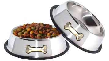 Top 10 Best Dog Food and Water Bowls Review In 2021- A Step By Step Guide 8