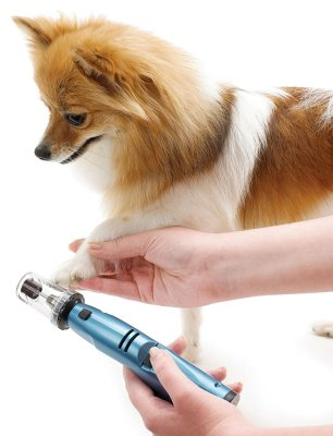 Top 10 Best Electric Pet Nail Grinders Review In 2020 – A Step By Step Guide 8