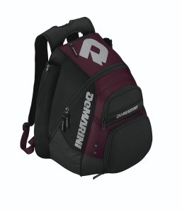 Top 10 Best Baseball Bags Review In 2021 – A Step By Step Guide 10