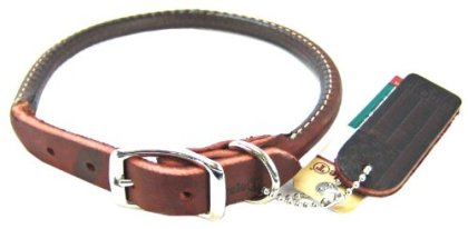 Top 10 Best Leather Dog Collars Review In 2021 – A Step By Step Guide 5