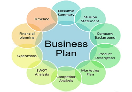 I will conduct feasibility and write business plan