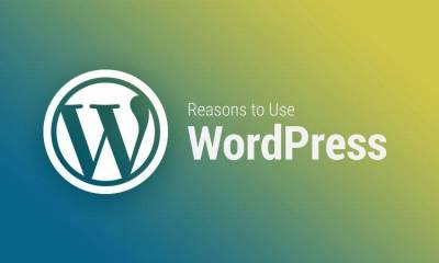 Reasons to Use WordPress