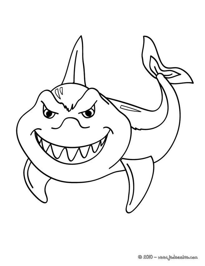 20 dessins de coloriage Baleine à Imprimer Gratuit à imprimer