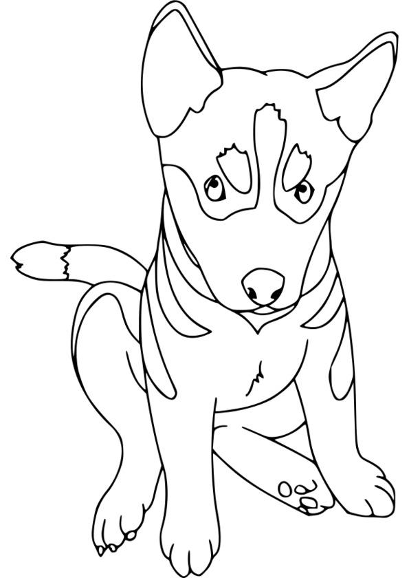 20 dessins de coloriage Chien De Traineau à Imprimer à