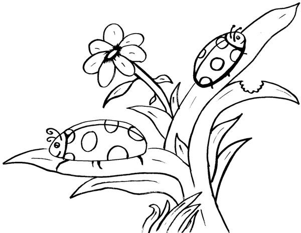 dessin de coccinelle a imprimer dessincoloriage