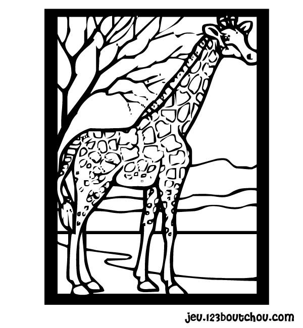 Coloriage Antilope