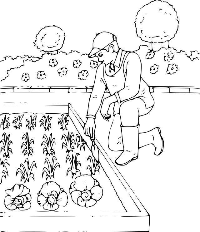 23 dessins de coloriage Jardinier à imprimer