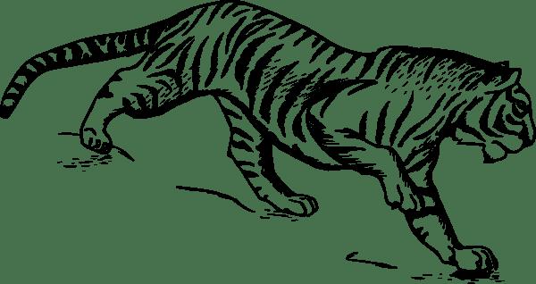 115 dessins de coloriage Tigre à imprimer