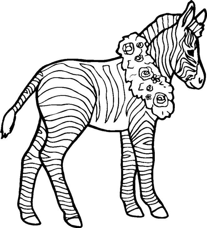dessin à colorier zèbre sans rayures