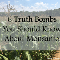 6 truth bombs you should know about monsanto