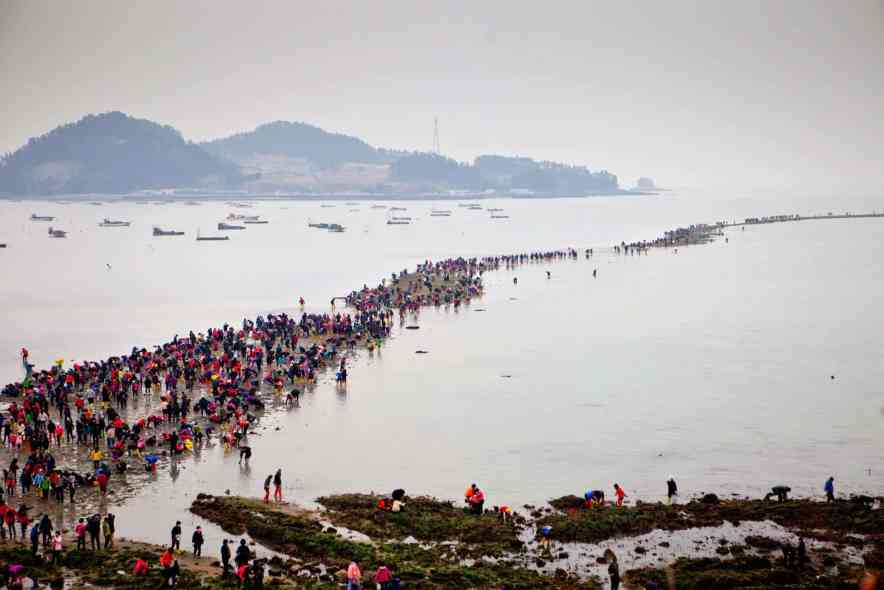 "South Korea's Moses Miracle: The ""Jindo Sea-Parting Festival,"""