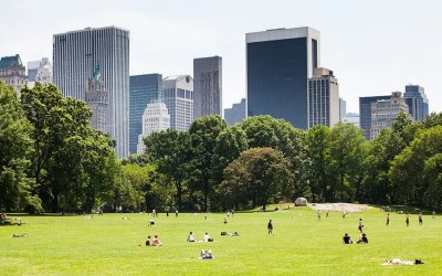 Free Outdoor Movies To Watch This Summer In NYC