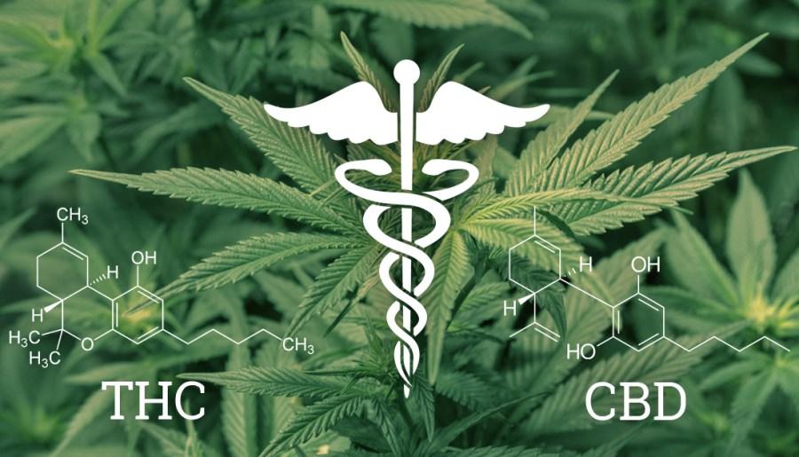 CBD THC bienfaits différences