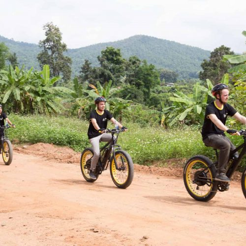 thrills in the hills | Buzzy Bee Bike, Chiang Mai, Thailand