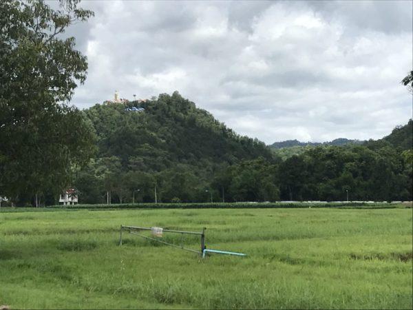 view on Wat Doi Kham   Buzzy Bee Bike, Chiang Mai, Thailand