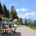 Screenshot_2020-04-28 Beizli Alp Mittler- und Ober Nüen Agrotourismus Glarnerland