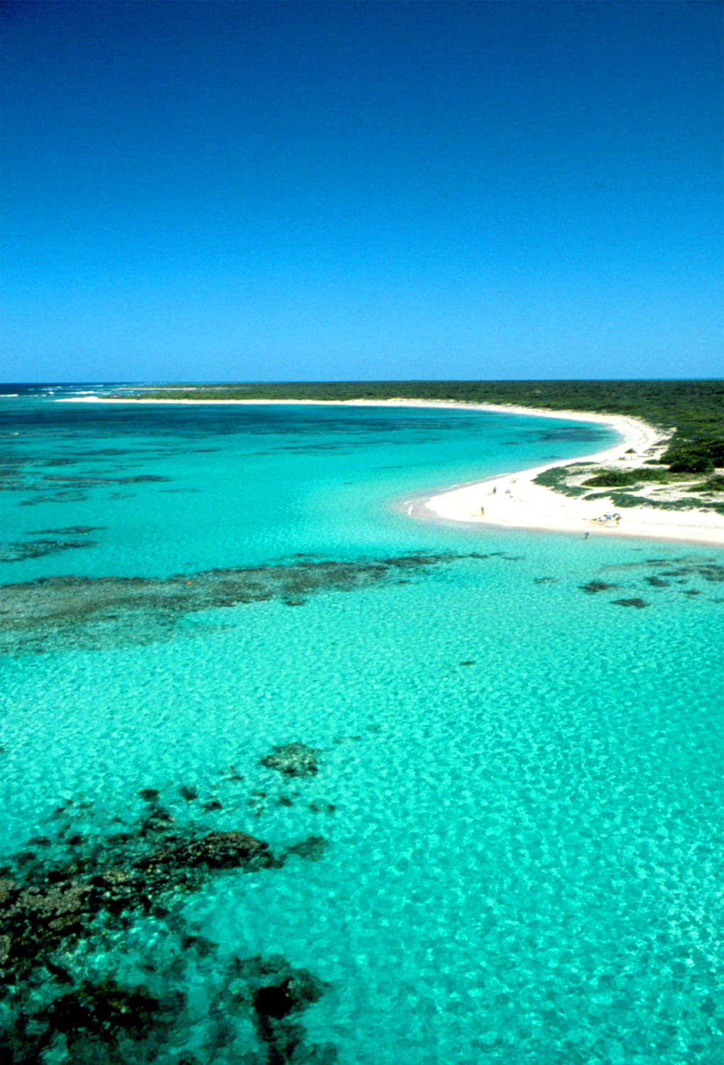 articles  Anegada for the Day