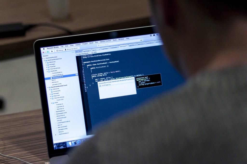 BVM Design Services - Software