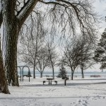 Snow in Starr Park