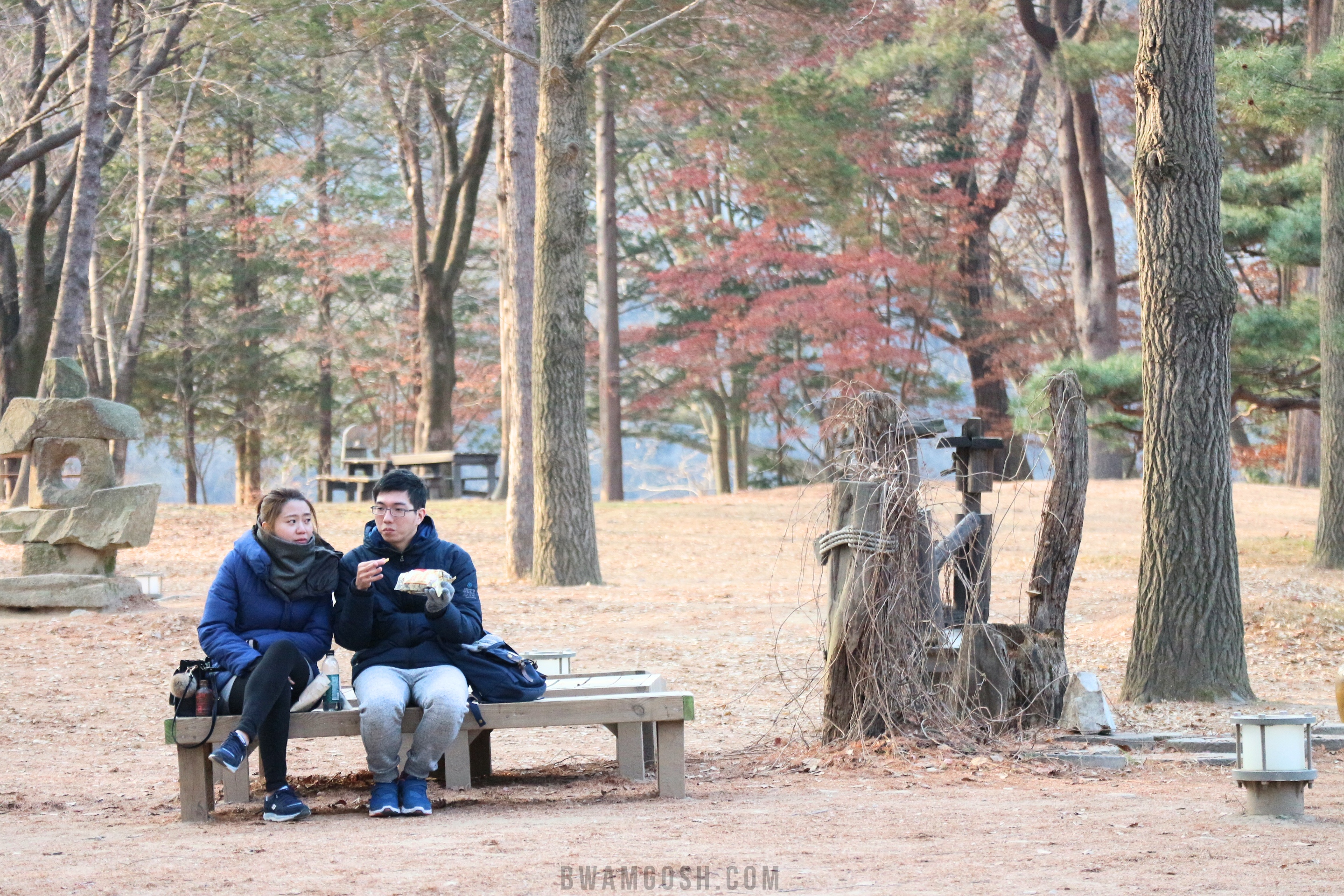 couple in Nami Island