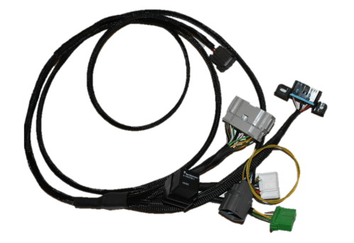 small resolution of bwe products wiring harness for honda civic ek 96 98 obd2a with honda k20 k24 engine swap