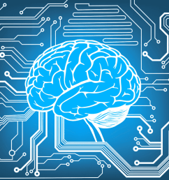 braincode an encyclopedia of human brain cells [ 1030 x 1030 Pixel ]