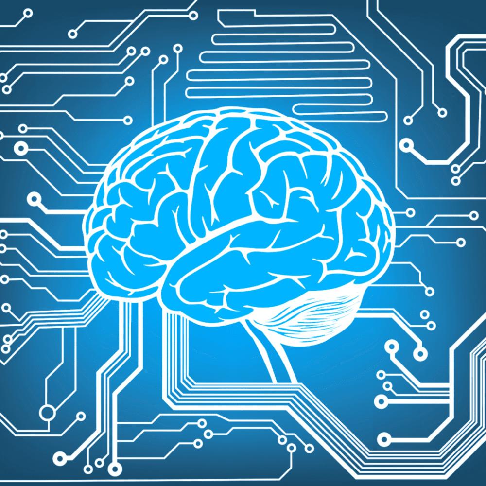 medium resolution of braincode an encyclopedia of human brain cells