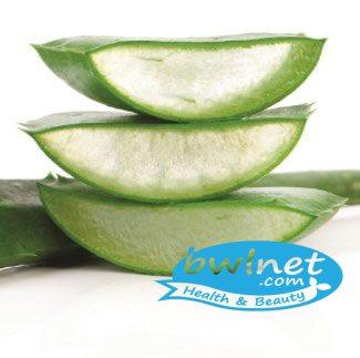 bwlnet-aloe-vera-leaf