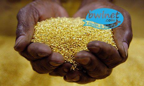 bwlnet-gold-powder