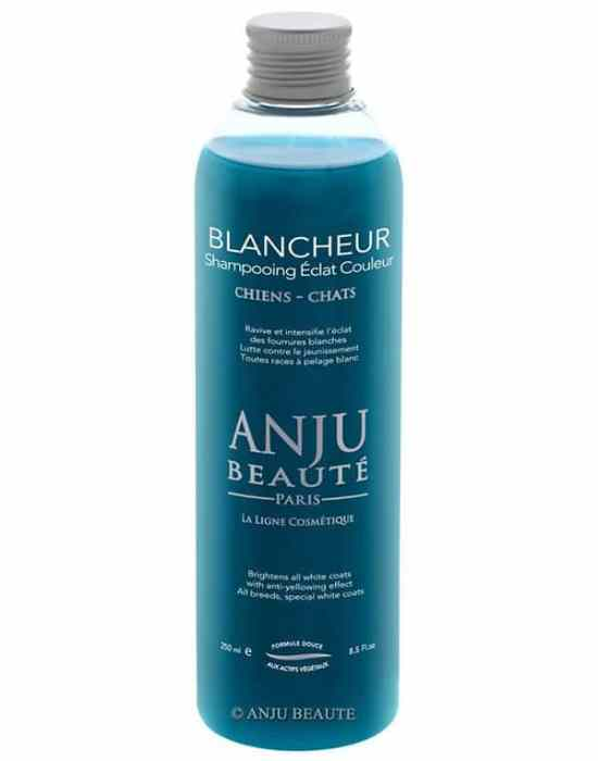 anju blancheur