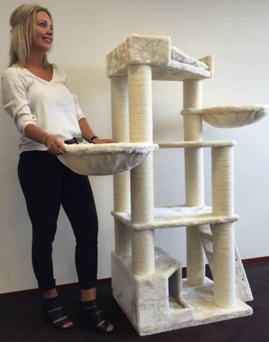rhrquality-cat-tree-corner-coon-cream