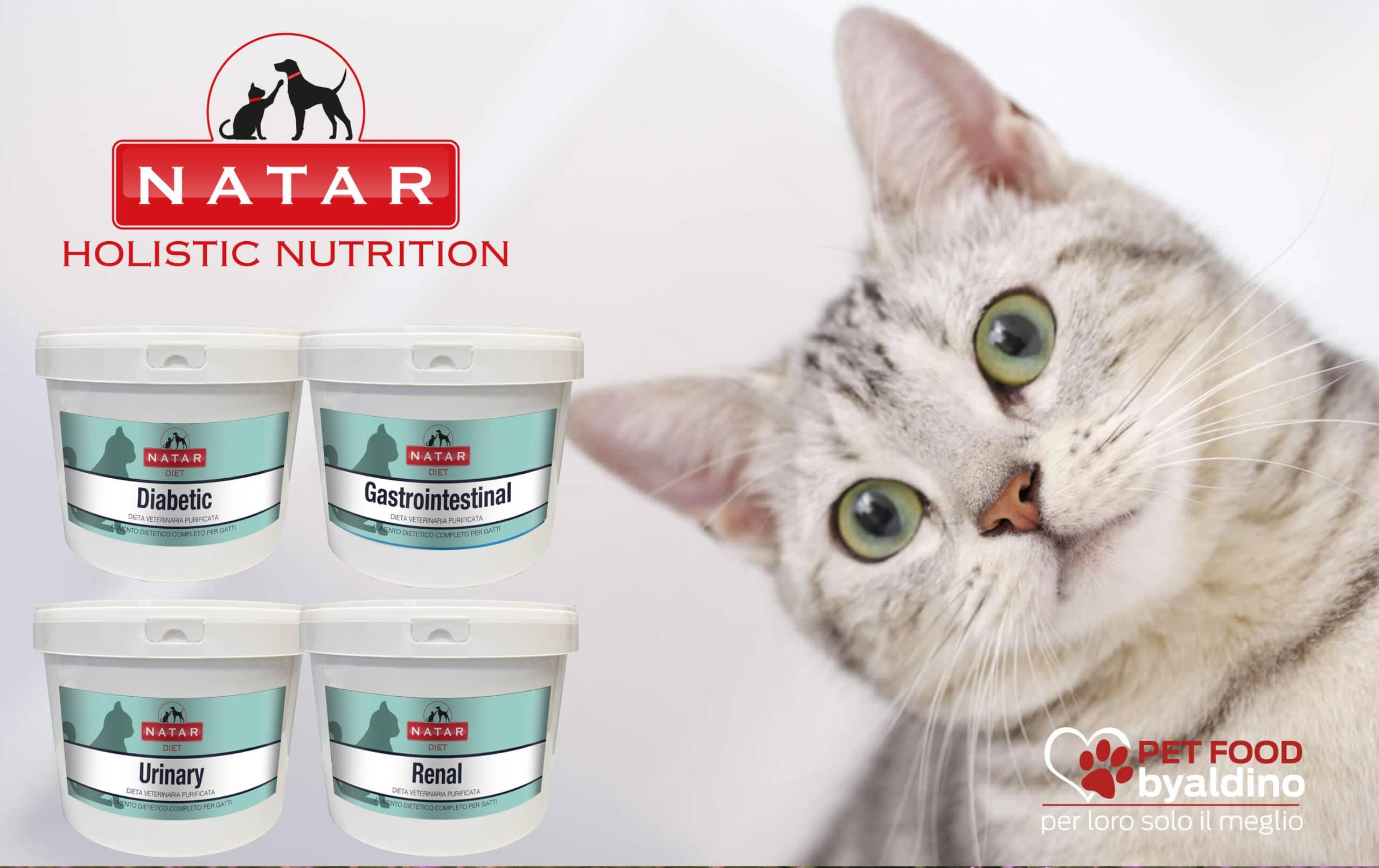 Natar Diete Gatto