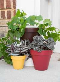 How to Paint Flower Pots for Outdoors: Easy Fall Front ...
