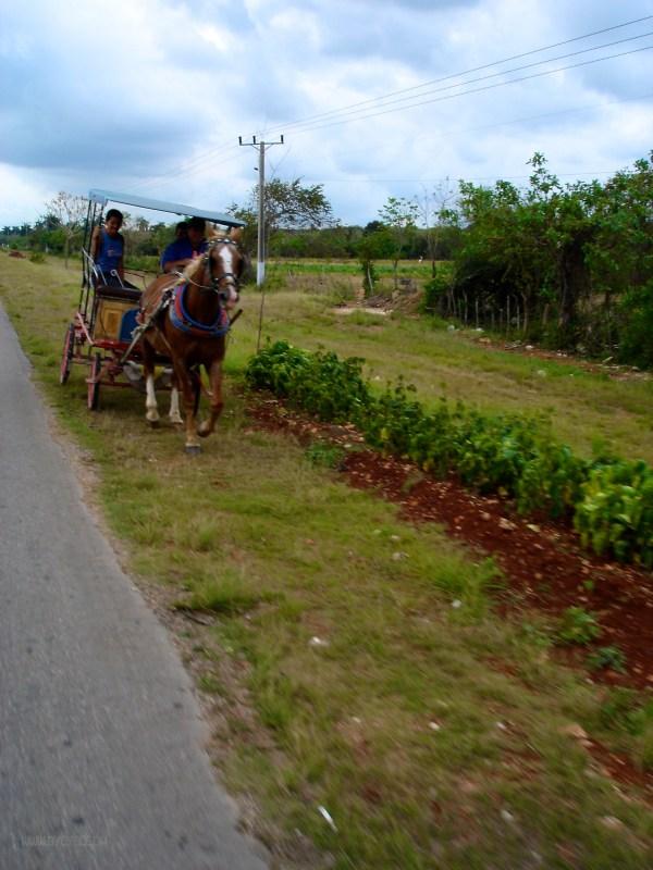2008-03-24_15-48-33_2008-03_Cuba