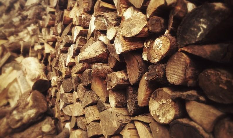 O palivové dřevo je opět zájem
