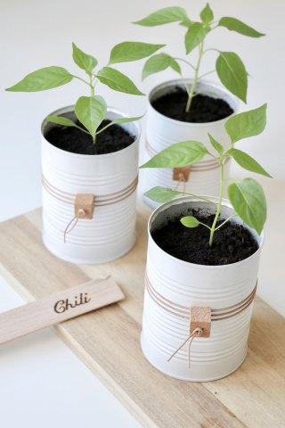 DIY potteskjuler: upcycling af brugte dåser til fine potter