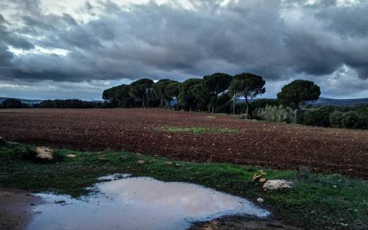 Winter in Andalusien – Titelbild
