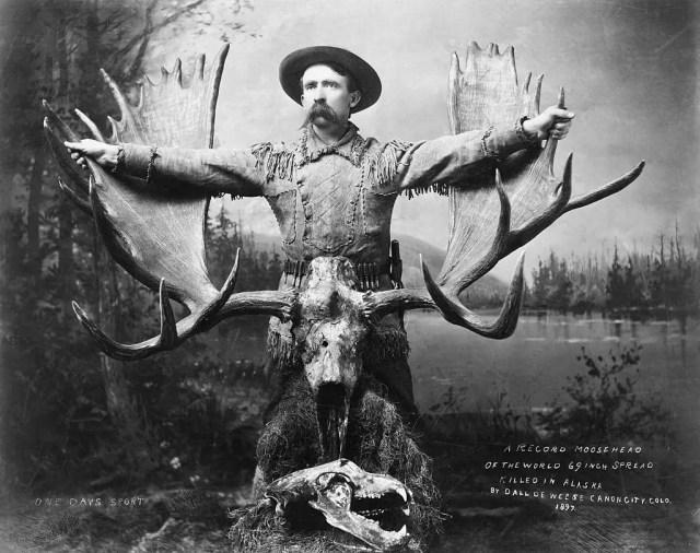 Record Moosehead--69-Inch spread shot in Alaska, 1897.